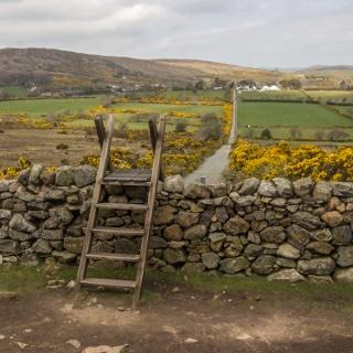 Northern Ireland Farmland