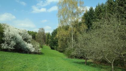 Naturschutzgebiet Venusberg