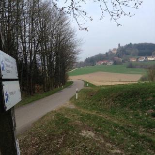 Blick zurück auf Burg Brennberg