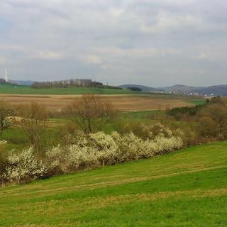A1 Blintrop - Blick auf Langenholthausen