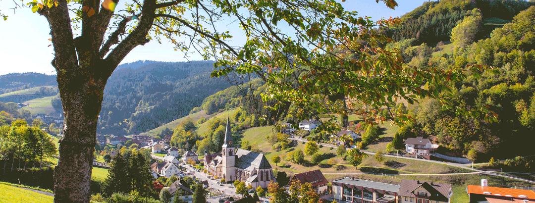 Blick auf Bad Peterstal Griesbach