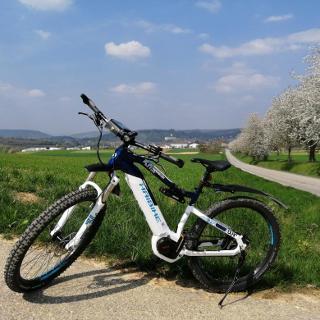 Feldweg von Offenau nach Gundelsheim