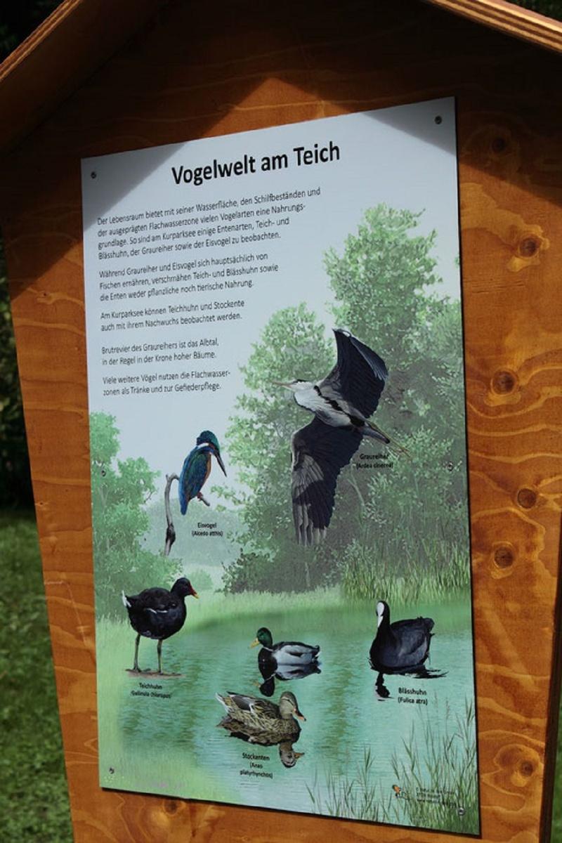 Vogellehrpfad Kurpark Waldbronn