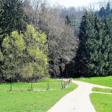 Wanderweg Nr. 40