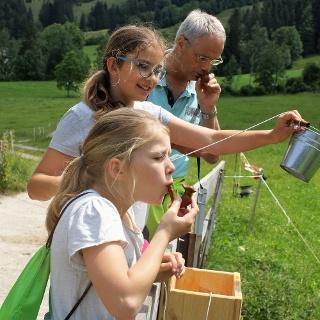Mit dem Wasser aus dem Bach bringt man den kleinen Ton-Vogel in der Abenteuerausrüstung zum Zwitschern