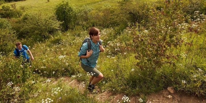 Premiumwandern auf dem Panoramaweg Perl
