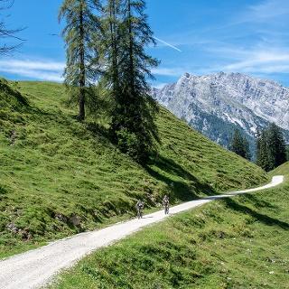 <![CDATA[Mountainbiker auf dem Weg über die Büchsenalm zur Gotzenalm]]>