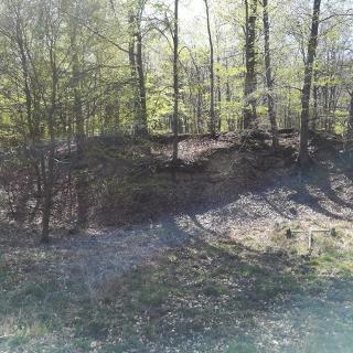 Kalksteinaufschluss am Wegesrand