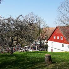 Am Haldenhof