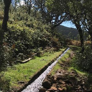 Streckenabschnitt der Levada do Moinho