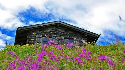 Old mountain hut