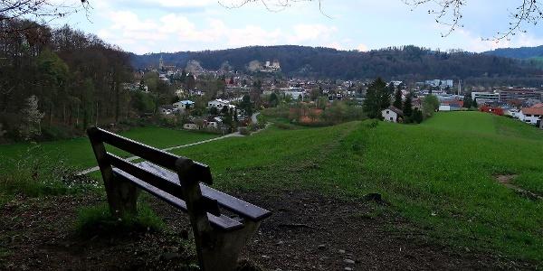 Blick auf Burgdorf und Schloss.