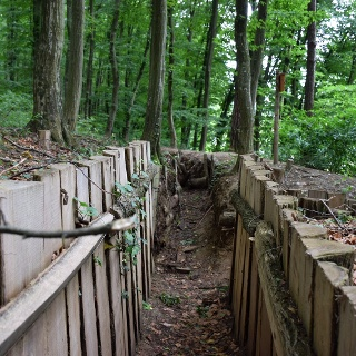 Bunkerek közötti árkok a Páka és Csömödér közti erdőben