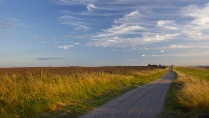 Trail path