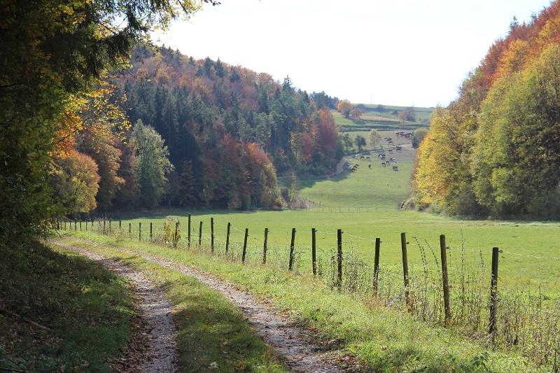 Wasserburgertalweg