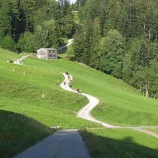 Richtung Berchtoldshöhe