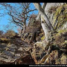 Rückblick zum Steig durch die Felsen Le Hérou ins Tal der Ourthe