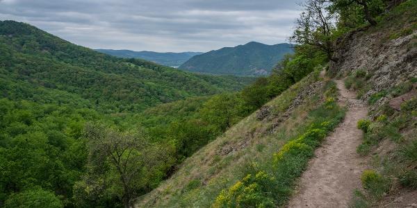 Pohľad na vrch Szent Mihály-hegy (z chodníku Spartacus)