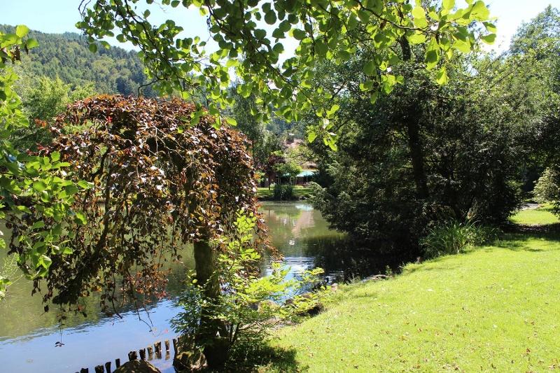 Haslacher Waldsee