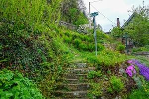 Foto Der Aufstieg in Krippen zwischen den Wohnhäusern am Ortsanfang