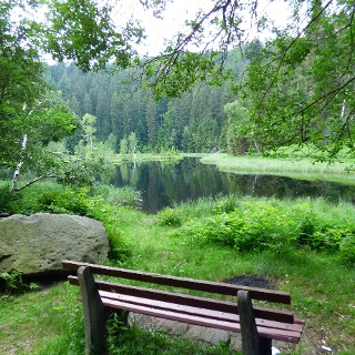 am Buhlbachsee
