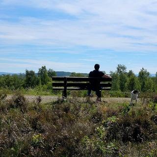 Die Trupbacher Heide bietet eine ungewöhnliche Natur und viele Aussichtspunkte zum Verweilen