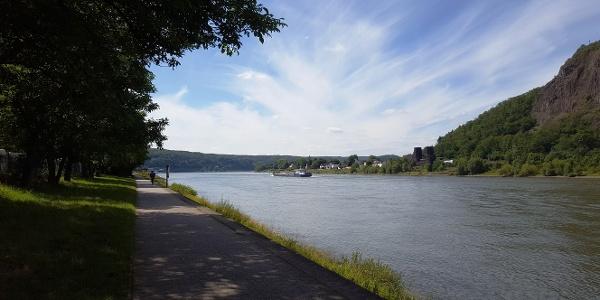Rheinradweg zwischen Sinzig und Remagen