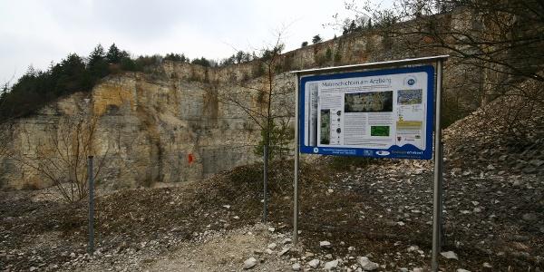 Infotafel Malmschichten am Arzberg