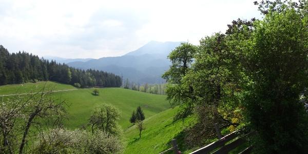 Liebliche Landschaft oberhalb von Türnitz