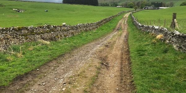 Walking on Rough Muddy Farm Track