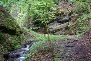 Foto im Gelobtbachtal