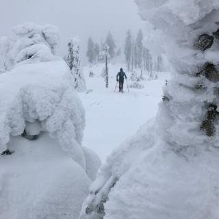Orientierung ist immer Winter gar nicht so einfach...