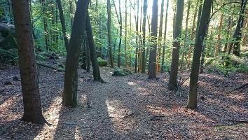 Foto Weg zum Lindigtblick und den Brüder Steinen
