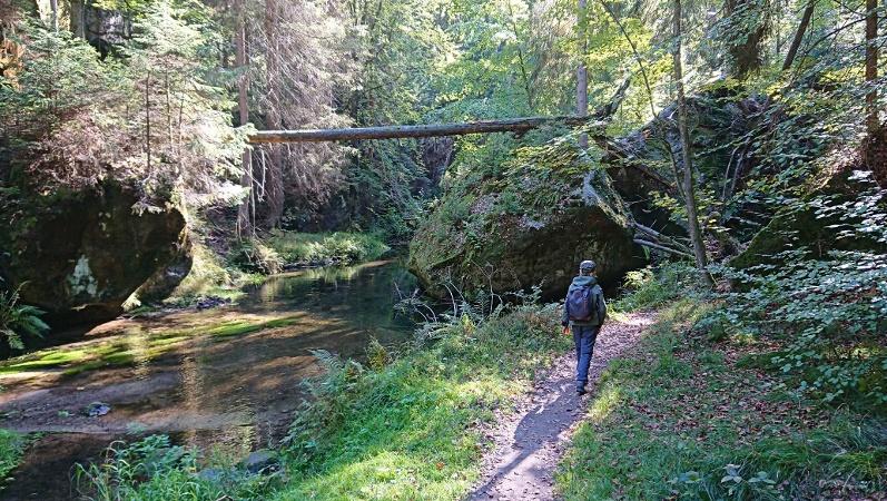 Foto Im grenznahen Gebiet von Hinterhermsdorf