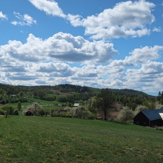 Ausblick in die Landschaft Smålands