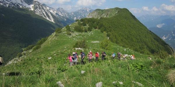 knapp vor dem Bergipfel des Mt. Stregone