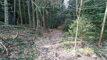 Foto Abstieg - Bielatal