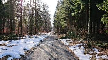 Foto Wormsbergweg