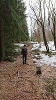 Foto Grenzweg zu den Tyssaer Wänden