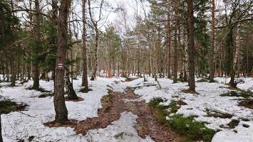 Foto Weg nach Ostrov (Eiland)