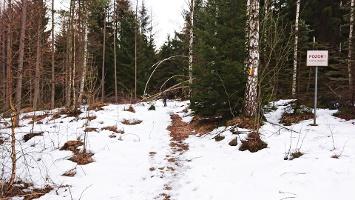 Foto Abzweig auf den Forststeig
