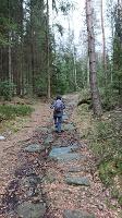 Foto Forststeig - Aufstieg auf dem Bielagrund