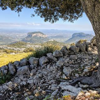 Blick auf den markanten Puig de s'Alcadena
