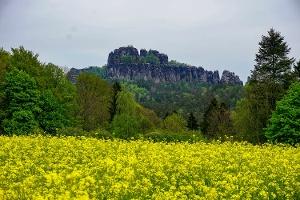 Foto Toller Blick auf die Schrammsteine von der Falkensteinstraße in Ostrau