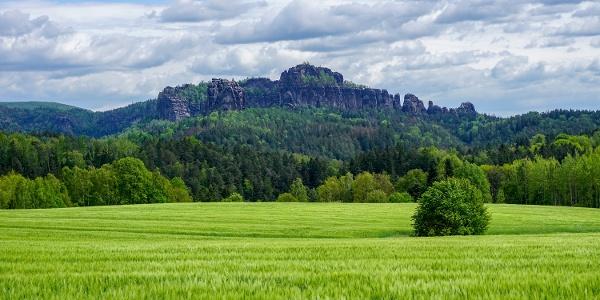Blick vom Panoramaweg bei Altendorf auf die Schrammsteine