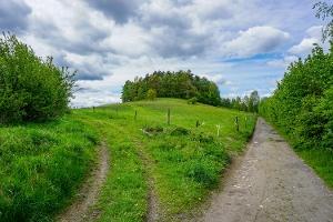 Foto Der völlig unscheinbare Adamsberg bei Altendorf