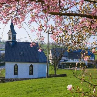 Kapelle Maria Heimsuchung in Büenfeld