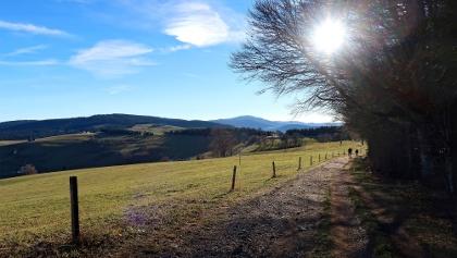 Wanderweg am Schauinsland.