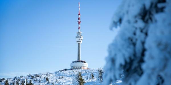 Jesenická lyžařská magistrála