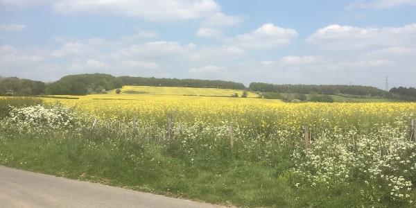 Cotswold farmland near Dowdeswell